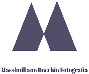 Massimiliano Bocchio